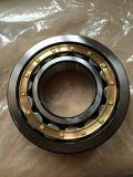 Cuscinetto a rullo cilindrico di vendita SKF 22214cck della fabbrica