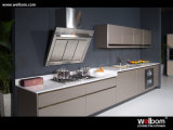 Armario de cocina de laca estándar de Welbom fijado con la encimera y el fregadero