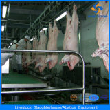 Buon Quality Machines su Pig Slaughter House Line