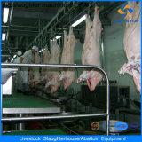 Máquinas da boa qualidade na linha da casa da chacina do porco