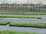 Weed-Steuergewebe im Garten verwenden