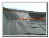 HDPE Geomembrane para el International Geosynthetics del terraplén