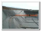 HDPE Geomembrane для International Geosynthetics Earthwork
