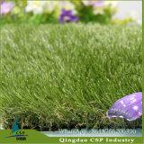 Paisaje hierba del césped sin agua