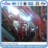 4-6t/H Chine Efb/chaîne de production en bois de boulette en vente