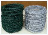 有刺鉄線かプラスチックは有刺鉄線/かみそりの有刺鉄線を覆った