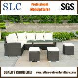 Мебель сада, мебель сада ротанга, установленный сад (SC-A7621)