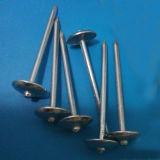 De hete Spijker van het Dakwerk van de Paraplu van de Verkoop Vlotte Steel Opgepoetste Hoofd