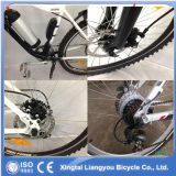 E-Bicicleta del litio de la fábrica de la E-Bici de la montaña E-Bike/de la aleación de aluminio