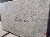 Andromedaのカウンタートップおよびタイルのための白い花こう岩の石の平板