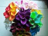 Fleurs artificielles de modèle neuf de zantedeschia