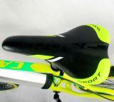 La bicyclette électrique de 26 pouces, énergie électrique a aidé le cycle, vélo électrique