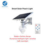 lumière solaire haute puissance de jardin de 12W 25With5V Bridgelux DEL