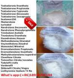 Decadurabolin Steroids Hormone pour Bodybuilding