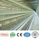 가금 농장을%s 프레임 자동적인 층 닭 건전지 감금소