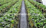 Invernadero plástico del acoplamiento de la estera del control de Weed del jardín que cubre con pajote la película