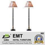 Lampe de Tableau d'hôtel + lumière de plancher (EMT-L17)