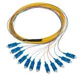 Una distribuzione monomodale delle 12 fibre della treccia Om1 9/125 ottico della fibra, memorie ottiche della treccia 12 della fibra