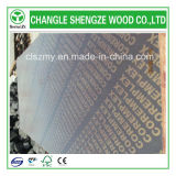 Glue Phenolic 18mm com Logo Film Faced Plywood