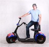 Vehículos eléctricos del transporte urbano del coche de batería de litio de la bicicleta de /Electric de los vehículos eléctricos de Harley
