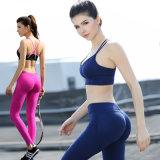 La yoga atractiva de la fábrica del OEM jadea las polainas de las mujeres firmemente