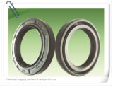 Oil Seal NBR