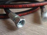 Assemblea di tubo flessibile idraulica (SAE 100 R2AT)