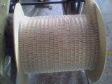 Двойной провод кольца близнеца Спирали-O петли