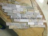 호리호리한 슬레이트 모자이크 Hhsc10X40-008