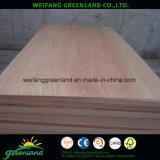madera contrachapada de la película del pino de 12m m Radiata