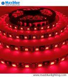 5050 LED 지구 30/60/72/84/96/120 LED 미터 RGB LED 테이프