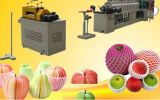 Approbation par la FDA PE Foam Plastic Protective Tubular Netting Fruit Packaging