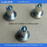 Accessoires d'échafaudage de Lalike Ringlock, système galvanisé d'échafaudage de Ringlock à vendre