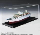 Boîtes de présentation acryliques transparentes de moulage