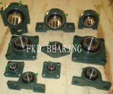 Fkd/Fe/Hhb 2 Hole Pillow Block BearingかBearing Units (UCP206)