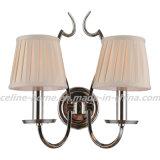 Une lampe décorative légère moderne (SL2016-1W)