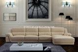 Amerikanisches ledernes Sofa (SBL-9028)