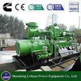 Biogas-Generator Kilowatt-MW oder elektrischer Strom-Generator-Preise