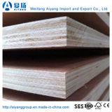 Pappel-Kern-Handelsfurnierholz für hoher Grad-Möbel
