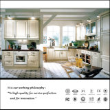 Klassische europäische Art-Küche-Möbel (FY0971)
