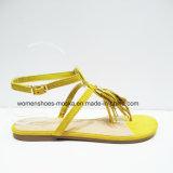 Nuovi sandali della signora Fashion Women Flat Heel di arrivo con la nappa