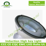 lumière élevée de compartiment d'induction de 80W~150W Industral avec 5 ans de garantie