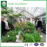 De Serres van het Glas van de bloem/van het Fruit/het Groeien van Groenten met het Systeem van het Zonnescherm