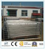 De Omheining van de Veiligheid van de bouw, Tijdelijke Omheining, het Comité van het Netwerk, het Comité van de Omheining