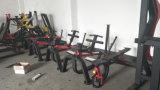 Le merci Sporting/attrezzature commerciali di esercitazione/hanno messo l'aumento a sedere del vitello