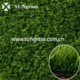 20mm Landscape/Garden/Recreation Artificial Lawn (qds-20-35)