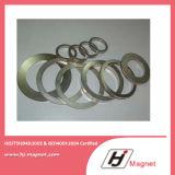Magnete di NdFeB di figura dell'anello dello zinco di alta qualità di fabbricazione della Cina