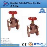 주철강 게이트 밸브 유럽 주식, 직업적인 제조자, 니스 질 세륨, API, ISO, Dn40