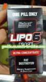 OEM/Nutrex Forschungs-LaborLipo 6 des Schwarz-Kapsel-Sport-Energie ultra Konzentrat-60 schwarze