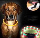Ворот самого нового любимчика собаки USB перезаряжаемые СИД проблескивая